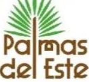 Proyecto Palmas del Este